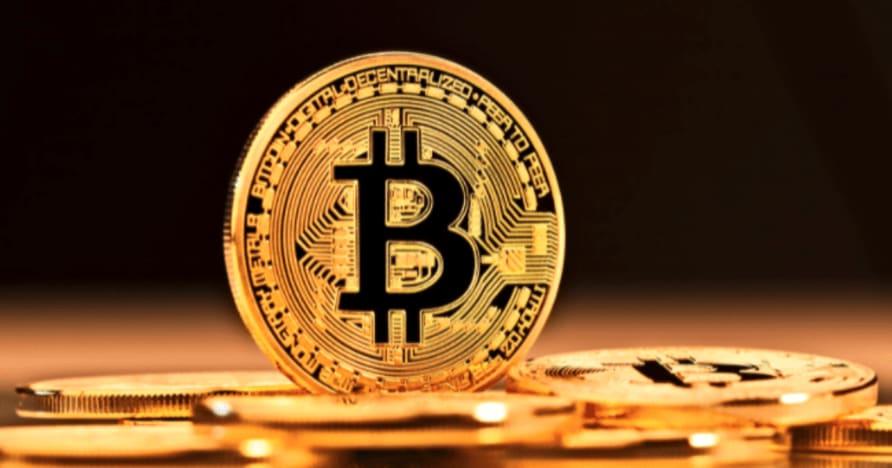 라이브 카지노 플레이어를 위한 입증된 Bitcoin 도박 팁